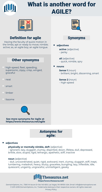 agile, synonym agile, another word for agile, words like agile, thesaurus agile