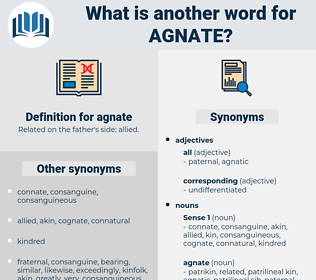 agnate, synonym agnate, another word for agnate, words like agnate, thesaurus agnate