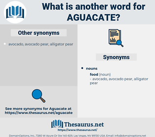 aguacate, synonym aguacate, another word for aguacate, words like aguacate, thesaurus aguacate