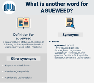 agueweed, synonym agueweed, another word for agueweed, words like agueweed, thesaurus agueweed