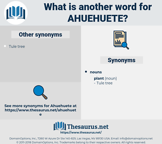 ahuehuete, synonym ahuehuete, another word for ahuehuete, words like ahuehuete, thesaurus ahuehuete