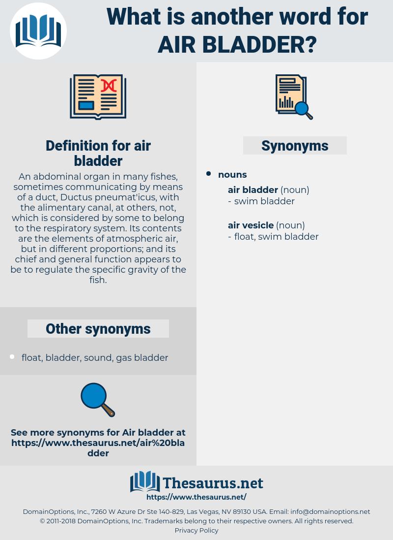 air bladder, synonym air bladder, another word for air bladder, words like air bladder, thesaurus air bladder