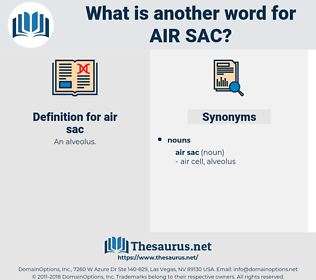 air sac, synonym air sac, another word for air sac, words like air sac, thesaurus air sac