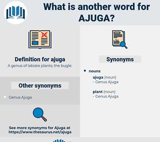 ajuga, synonym ajuga, another word for ajuga, words like ajuga, thesaurus ajuga