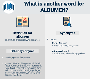 albumen, synonym albumen, another word for albumen, words like albumen, thesaurus albumen