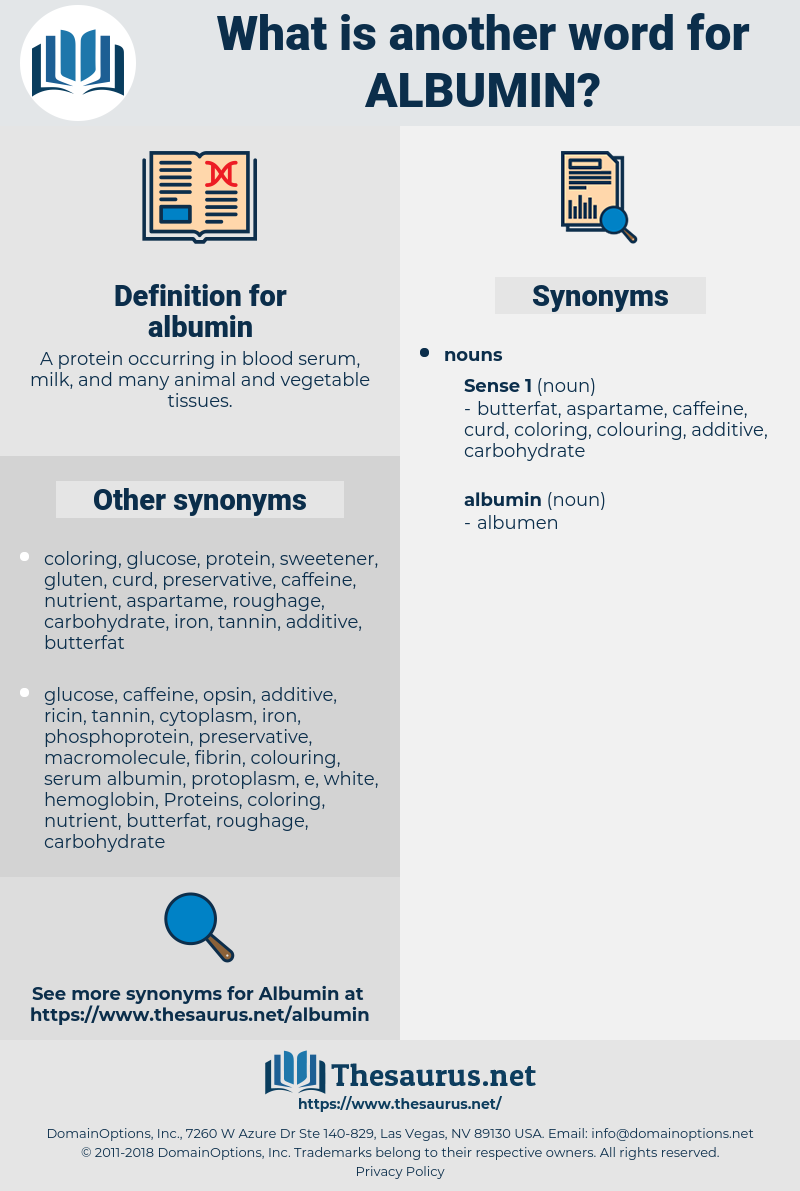 Synonyms for ALBUMIN - Thesaurus net