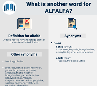 alfalfa, synonym alfalfa, another word for alfalfa, words like alfalfa, thesaurus alfalfa
