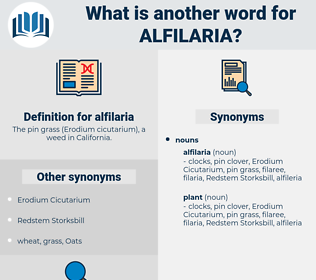 alfilaria, synonym alfilaria, another word for alfilaria, words like alfilaria, thesaurus alfilaria