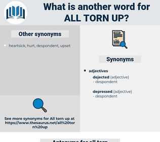 all torn up, synonym all torn up, another word for all torn up, words like all torn up, thesaurus all torn up
