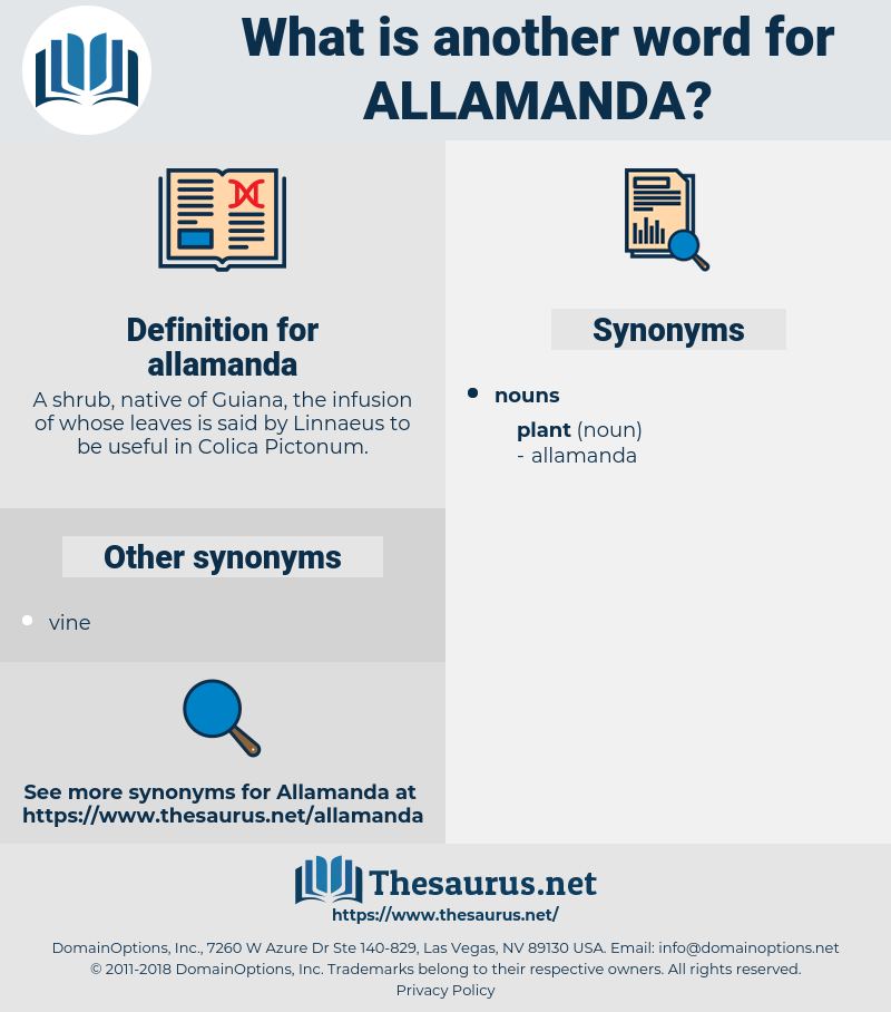 allamanda, synonym allamanda, another word for allamanda, words like allamanda, thesaurus allamanda