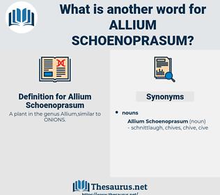 Allium Schoenoprasum, synonym Allium Schoenoprasum, another word for Allium Schoenoprasum, words like Allium Schoenoprasum, thesaurus Allium Schoenoprasum
