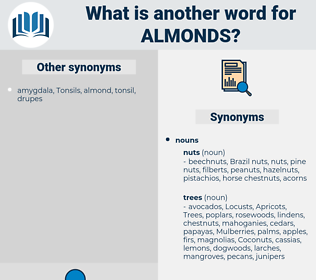 Almonds, synonym Almonds, another word for Almonds, words like Almonds, thesaurus Almonds