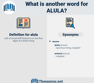 alula, synonym alula, another word for alula, words like alula, thesaurus alula