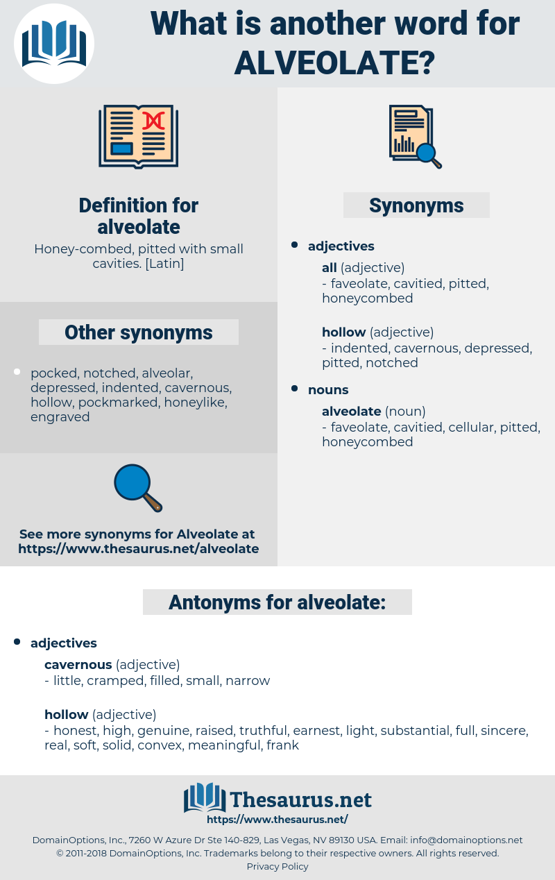 alveolate, synonym alveolate, another word for alveolate, words like alveolate, thesaurus alveolate