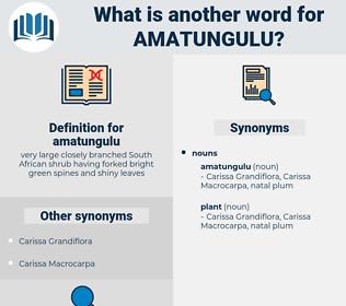 amatungulu, synonym amatungulu, another word for amatungulu, words like amatungulu, thesaurus amatungulu