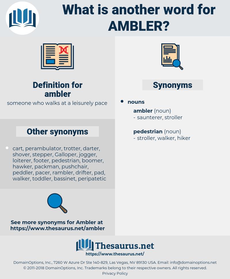ambler, synonym ambler, another word for ambler, words like ambler, thesaurus ambler