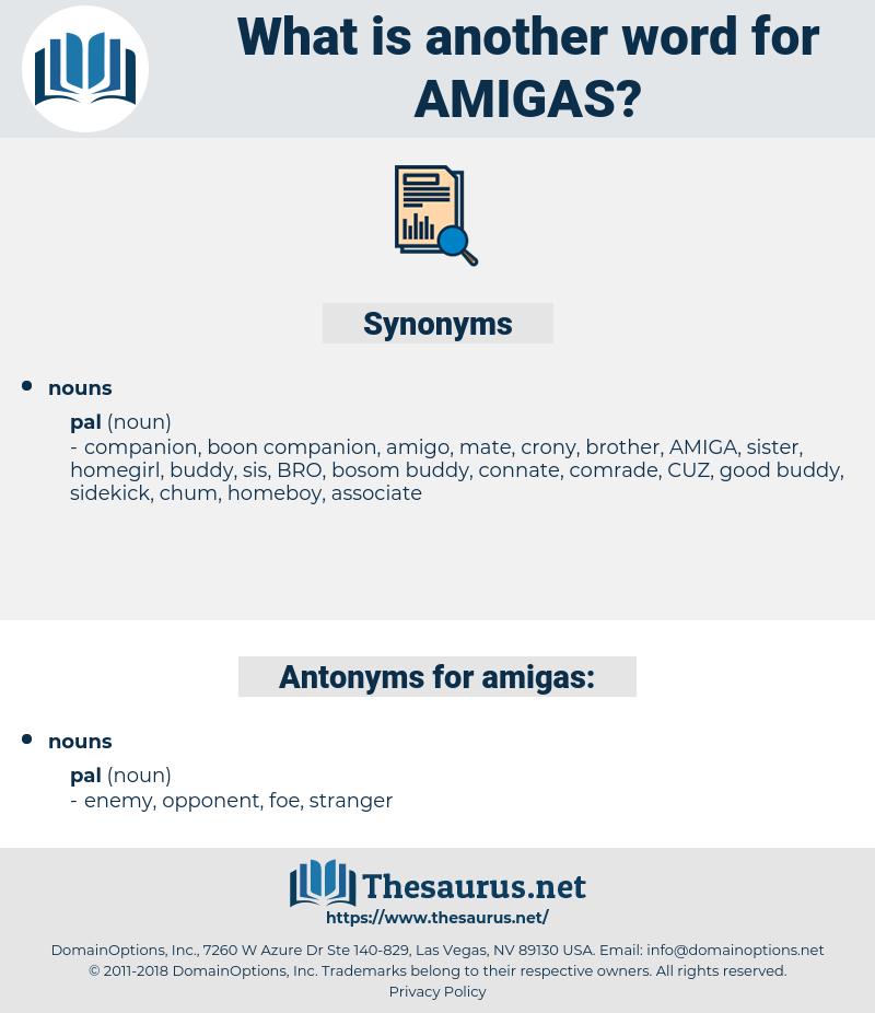 amigas, synonym amigas, another word for amigas, words like amigas, thesaurus amigas