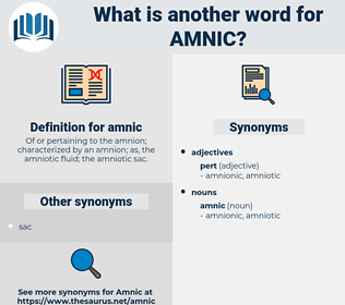 amnic, synonym amnic, another word for amnic, words like amnic, thesaurus amnic