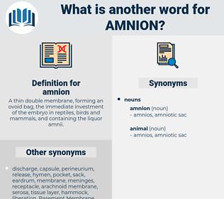 amnion, synonym amnion, another word for amnion, words like amnion, thesaurus amnion