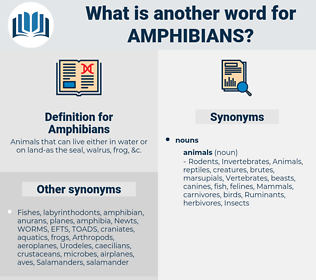 Amphibians, synonym Amphibians, another word for Amphibians, words like Amphibians, thesaurus Amphibians