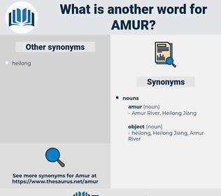 amur, synonym amur, another word for amur, words like amur, thesaurus amur