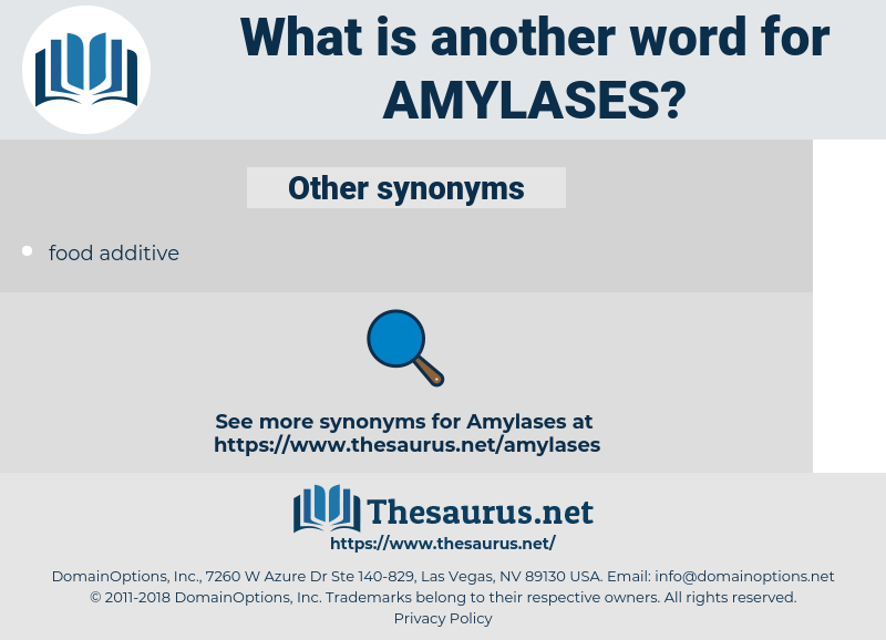 Amylases, synonym Amylases, another word for Amylases, words like Amylases, thesaurus Amylases