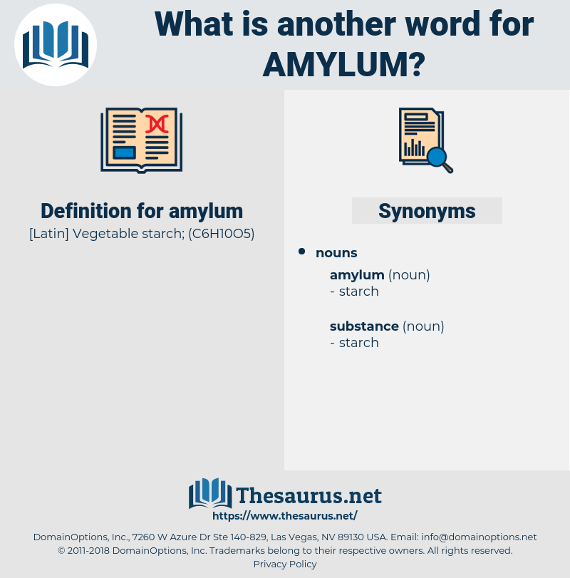 amylum, synonym amylum, another word for amylum, words like amylum, thesaurus amylum