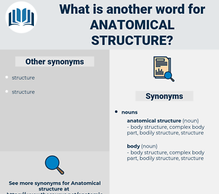 anatomical structure, synonym anatomical structure, another word for anatomical structure, words like anatomical structure, thesaurus anatomical structure
