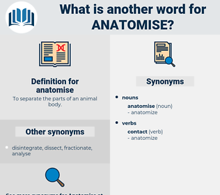 anatomise, synonym anatomise, another word for anatomise, words like anatomise, thesaurus anatomise