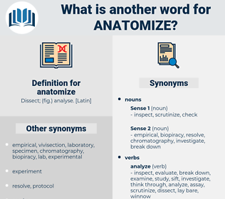 anatomize, synonym anatomize, another word for anatomize, words like anatomize, thesaurus anatomize