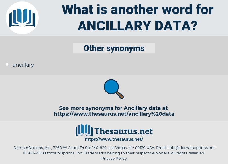 ancillary data, synonym ancillary data, another word for ancillary data, words like ancillary data, thesaurus ancillary data