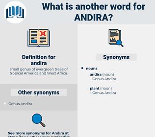 andira, synonym andira, another word for andira, words like andira, thesaurus andira