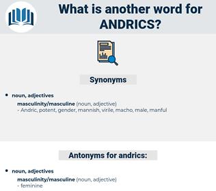 andrics, synonym andrics, another word for andrics, words like andrics, thesaurus andrics