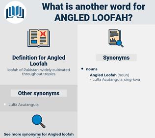 Angled Loofah, synonym Angled Loofah, another word for Angled Loofah, words like Angled Loofah, thesaurus Angled Loofah