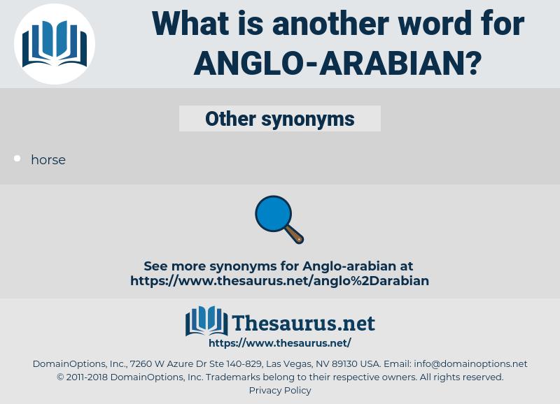 anglo-arabian, synonym anglo-arabian, another word for anglo-arabian, words like anglo-arabian, thesaurus anglo-arabian