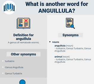 anguillula, synonym anguillula, another word for anguillula, words like anguillula, thesaurus anguillula