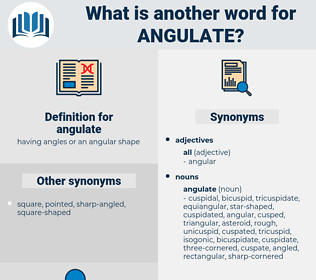 angulate, synonym angulate, another word for angulate, words like angulate, thesaurus angulate
