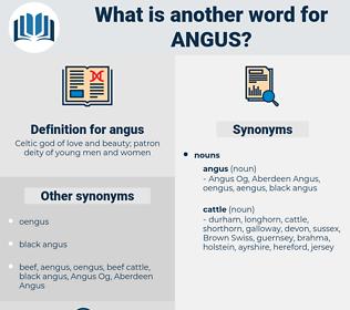 angus, synonym angus, another word for angus, words like angus, thesaurus angus