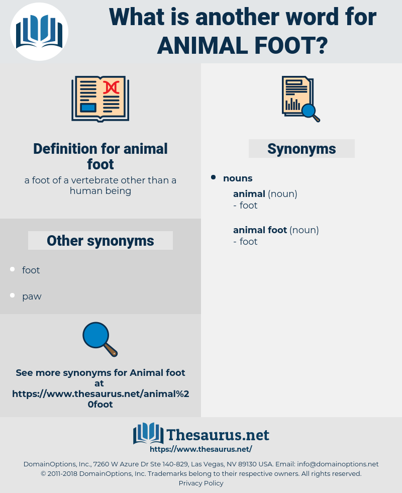 animal foot, synonym animal foot, another word for animal foot, words like animal foot, thesaurus animal foot