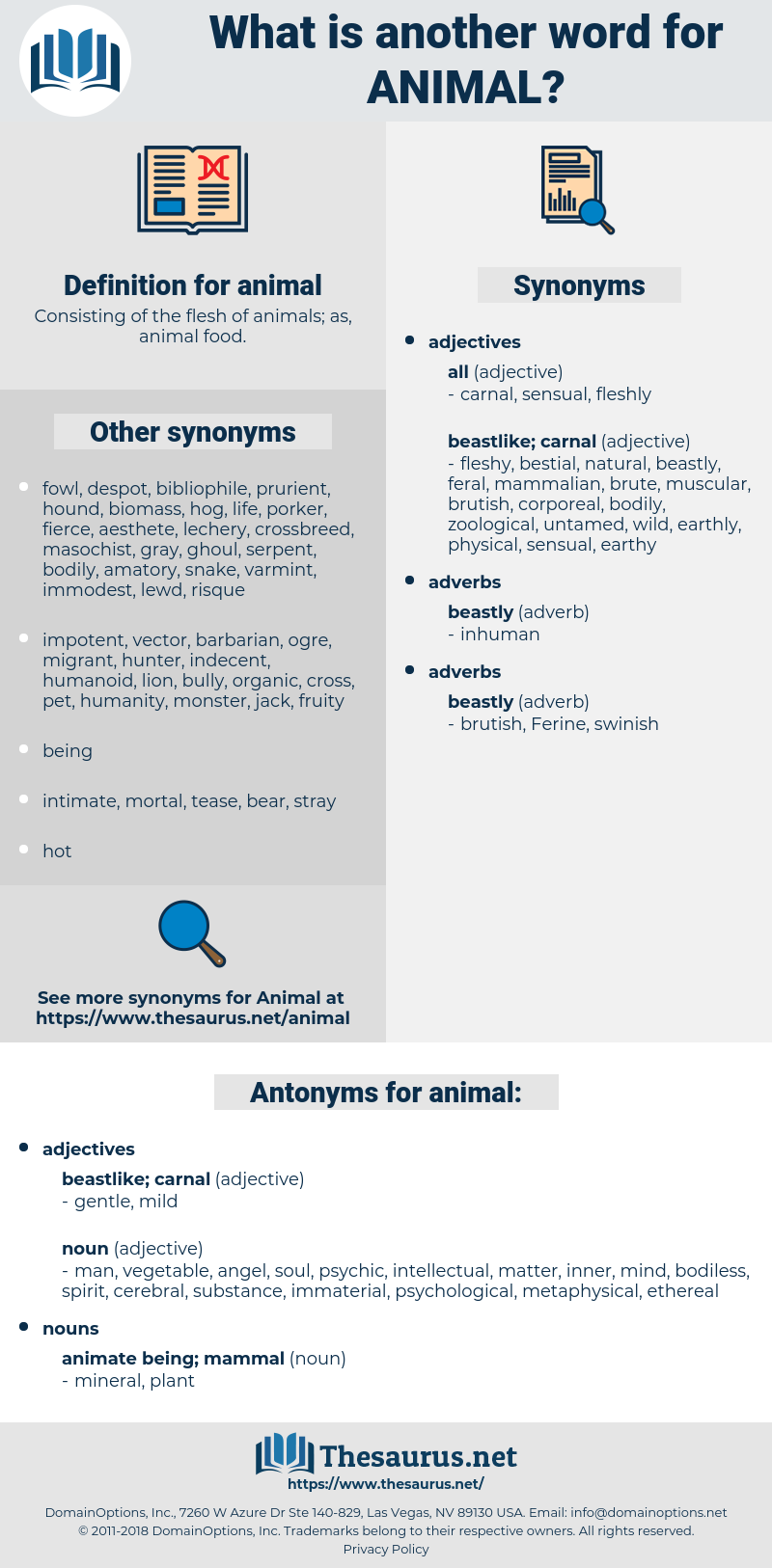 animal, synonym animal, another word for animal, words like animal, thesaurus animal