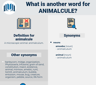 animalcule, synonym animalcule, another word for animalcule, words like animalcule, thesaurus animalcule