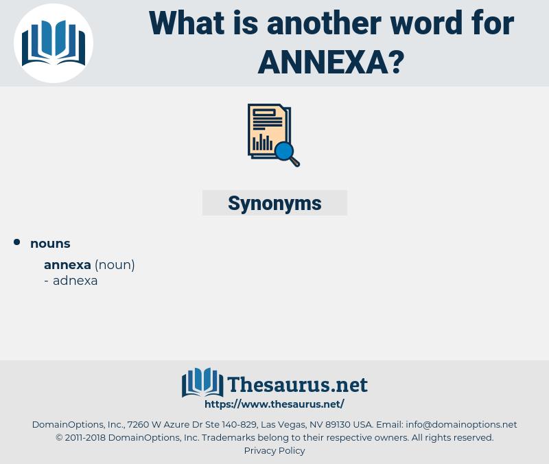 annexa, synonym annexa, another word for annexa, words like annexa, thesaurus annexa
