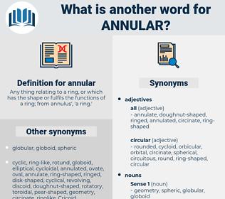 annular, synonym annular, another word for annular, words like annular, thesaurus annular