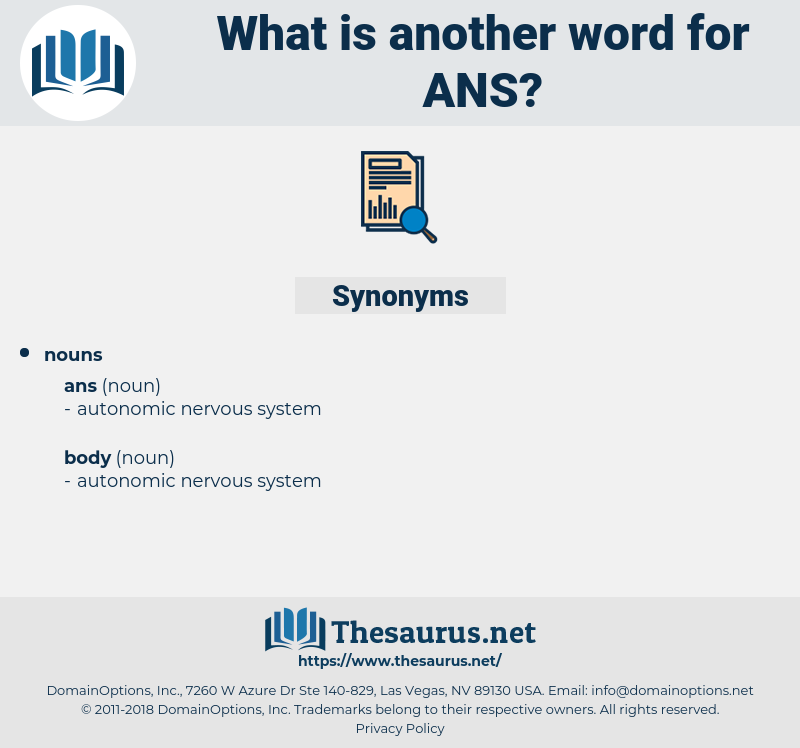 ans, synonym ans, another word for ans, words like ans, thesaurus ans