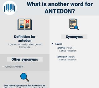 antedon, synonym antedon, another word for antedon, words like antedon, thesaurus antedon