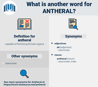 antheral, synonym antheral, another word for antheral, words like antheral, thesaurus antheral