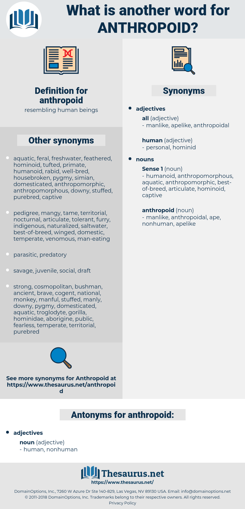 anthropoid, synonym anthropoid, another word for anthropoid, words like anthropoid, thesaurus anthropoid