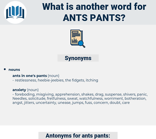 ants pants, synonym ants pants, another word for ants pants, words like ants pants, thesaurus ants pants
