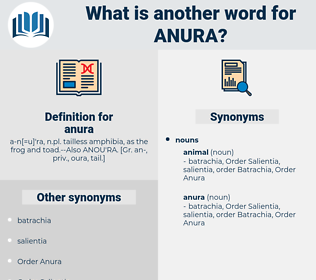 anura, synonym anura, another word for anura, words like anura, thesaurus anura