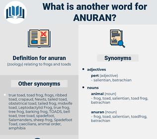 anuran, synonym anuran, another word for anuran, words like anuran, thesaurus anuran